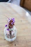 Nahaufnahme eines schönen Blumenstraußes der purpurroten Blenden in einem Glasvase Lizenzfreie Stockfotos