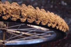 Nahaufnahme eines schmutzigen mountainbike Gummireifens Stockfoto