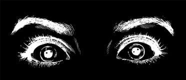 Nahaufnahme erschrak Gesicht der Sch?nheit mit sch?nen blauen Augen und gro?e h?bsche Wimpern und Augenbrauen Makro des Menschen lizenzfreie abbildung