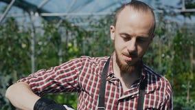 Nahaufnahme-Fahrt eine Kamera auf einem schönen jungen Gärtner Bärtiger Junge ist Blumen eines Gärtners, der Bewässerung und Bäum stock footage