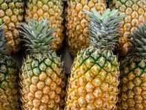 Nahaufnahme-frische Thailand-Ananas Lizenzfreie Stockfotografie