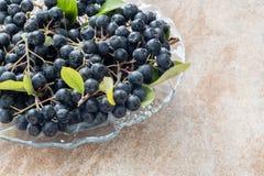 Nahaufnahme frischen reifen schwarzen Chokeberry Aronia-melanocarpa mit Blättern im Glastopf auf braunem keramischem Hintergrund Lizenzfreie Stockfotografie