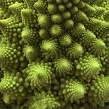 Nahaufnahme frischen Romanesco-Brokkolis stockbild