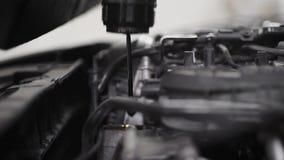 Nahaufnahme geschossen von einem Mechaniker, der Öl in Auto ` s Maschine, offene Haube überprüft stock footage