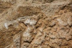 Nahaufnahme geschossen von einem Stein mit gelbem Sand Lizenzfreie Stockbilder