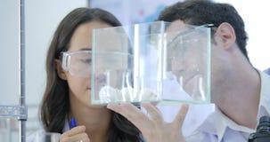 Nahaufnahme geschossen von zwei medizinische Forschungs-Wissenschaftlern, die Labormaus in einem Glaskäfig betrachten Labor hell  stock video