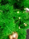Nahaufnahme-grüner Weihnachtsbaum mit der Goldkugel, Dekorationen beleuchtend Stockfoto