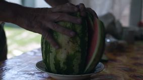 Nahaufnahme, Hände von Männern halten Schnitt-zu-Stücke reife Wassermelone stock video footage