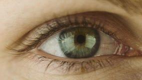 Nahaufnahme-Makroschuß des weiblichen menschliches Augen-Blinkens stock video