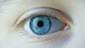 Nahaufnahme-Makroschu? des weiblichen menschlichen Auges stock video footage