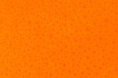 Nahaufnahme nur der orange Fruchthaut Stockfoto