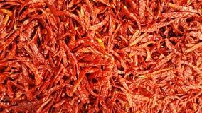 Nahaufnahme organischer frischer roter Chili Peppers am Frischmarkt als Naturbestandteil Lizenzfreies Stockbild