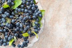 Nahaufnahme reifen schwarzen Chokeberry Aronia-melanocarpa mit Blättern im Glastopf auf braunem keramischem Hintergrund Stockbilder