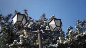 Nahaufnahme-Retro- Straßenlaterneauf dem Hintergrund von Snowy-Tannen und von blauem Himmel stock video