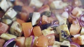 Nahaufnahme schnitt Gemüse: rote Tomaten, purpurrote Zwiebeln und Auberginen werden gedämpft stock video footage