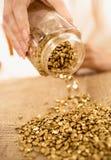 Nahaufnahme schoss von der Frau, die Goldbarren voll von den Goldnuggets hält lizenzfreie stockfotos