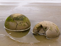 Nahaufnahme von berühmten kugelförmigen Moeraki-Flusssteinen in NZ Lizenzfreie Stockfotografie