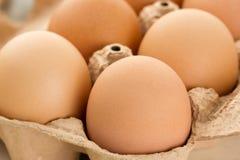 Nahaufnahme von braunen Eiern Lizenzfreies Stockbild