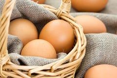 Nahaufnahme von braunen Eiern Lizenzfreie Stockfotografie