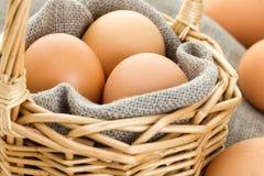 Nahaufnahme von braunen Eiern Lizenzfreie Stockfotos