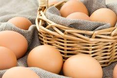 Nahaufnahme von braunen Eiern Lizenzfreie Stockbilder