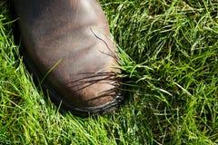 Nahaufnahme von Brown-Lederstiefel auf Gras mit kontrastierenden Schatten von Grashalmen Stockfotografie