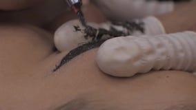 Nahaufnahme von Cosmetologist microblading Verfahren machend stock video