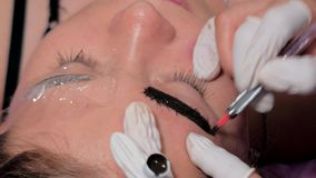 Nahaufnahme von Cosmetologist microblading Verfahren machend Dauerhaftes Make-up Dauerhaftes T?towieren von Augenbrauen stock video