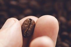 Nahaufnahme von den Fingern, die Kaffeebohne mit halten Lizenzfreies Stockbild