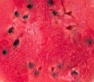 Nahaufnahme von den neuen Scheiben der roten Wassermelone lokalisiert auf weißem Hintergrund Dieses hat Beschneidungspfad stockfoto