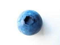 Nahaufnahme von einer empfindlichen und frischen Blaubeere Lizenzfreies Stockbild
