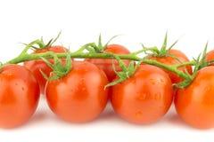 Nahaufnahme von frischen Cocktail-Tomaten auf weißem Hintergrund Stockfoto