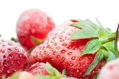 Nahaufnahme von gefrorenen roten Erdbeeren mit Frost Stockfotos