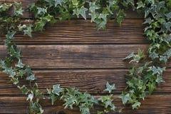 Nahaufnahme von grünen Efeuzweigen auf einem hölzernen Hintergrund der Weinlese Stockfoto