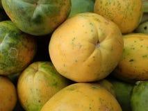 Nahaufnahme von hawaiischen Papayas Stockbild