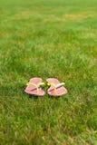 Nahaufnahme von hellen Flipflops auf grünem Gras Stockfotografie