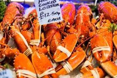 Nahaufnahme von Hummern im Stadt-Markt in London Stockbilder