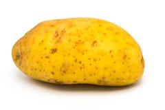Nahaufnahme von Kartoffelrohem lokalisiert auf weißem Hintergrund stockbilder