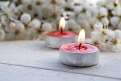 Nahaufnahme von roten Kerzen nahe den Niederlassungen von wei?en Kirschbl?ten lizenzfreies stockfoto