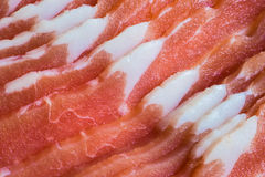Nahaufnahme von Schweinebauch-Scheiben Stockfotografie