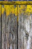 Nahaufnahme von verwitterten hölzernen Brettern mit hellem gelbem Moos stockfoto