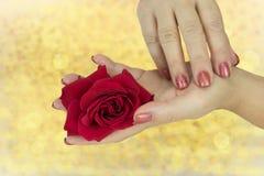 Nahaufnahme von weiblichen Händen mit manikürten rosa Nägeln hält im h lizenzfreie stockbilder