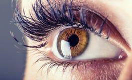 Nahaufnahme von woman& x27; s-Auge Makro schönes weibliches Auge Stockfotografie