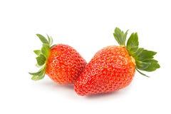 Nahaufnahme von zwei frischen saftigen organischen Erdbeeren mit weißem backg Lizenzfreie Stockfotografie