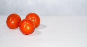 Nahaufnahme von zwei saftigen Tomaten mit Tropfen Lizenzfreie Stockbilder