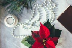 Nahaufnahme-Weihnachtshintergrund mit Poinsettia Glückliches neues Jahr lizenzfreies stockbild