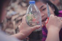 Nahaufnahme zu den Studenten pflanzen Bäume in den Plastikflaschen lizenzfreies stockbild