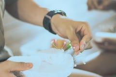 Nahaufnahme zu den Studentenhänden verzieren die Vorhänge decorate lizenzfreie stockfotos