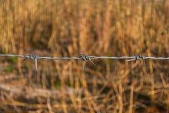 Nahaufnahme zum Stacheldraht auf Unschärfe-Wiesen-Hintergrund Stockbild
