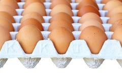 Nahaufnahmeansicht des Hühnerbraunen Eies Stockfoto
